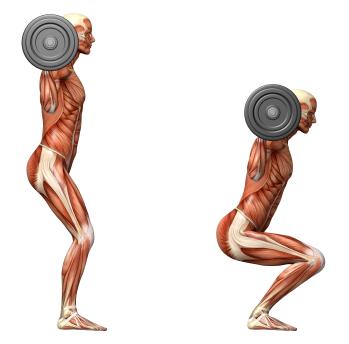 Resultado de imagem para squat movement